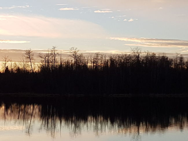 sunset on the water Canada Landscape EyeEm Nature Lover Sun Scenic No Animals Water Reflection Silhouette Trees Sunset Sky Tranquility No People Calm Peaceful View EyeEmNewHere Elkislandpark Alberta Reflection Tree No People Nature Lake Sky Water Beauty In Nature Outdoors Day