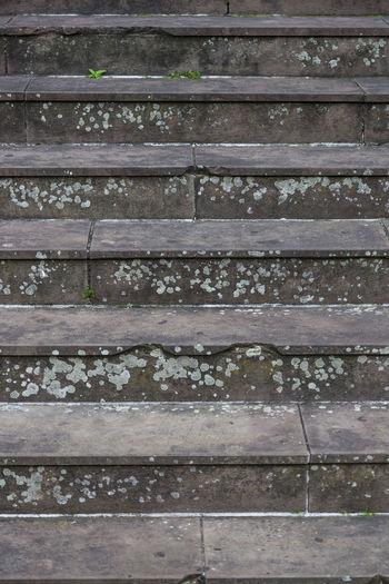 Full frame shot of wood track