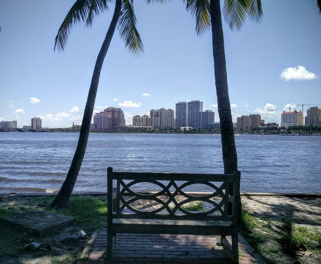 Water Palm Tree Tranquil Scene Outdoors Blue Nature Scenics Riverbank Tourism Travel Destinations Sunny Day Florida Beauty Palm Beach Waterside Chilling. Cityscapes City Landscape Florida Summer Florida Life Bench View Bench With A View Benchlovers Seaside Seats