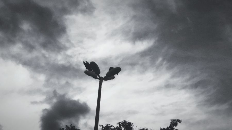 They are always in spread.. EyeEmNewHere Vulture Sky Nature Bigbird B&w Cicleofnature Spread Wings Alwayswatching Dontbesoshy OpenWings Brasília Brazil Afternoon Heavyweather Itwillrain