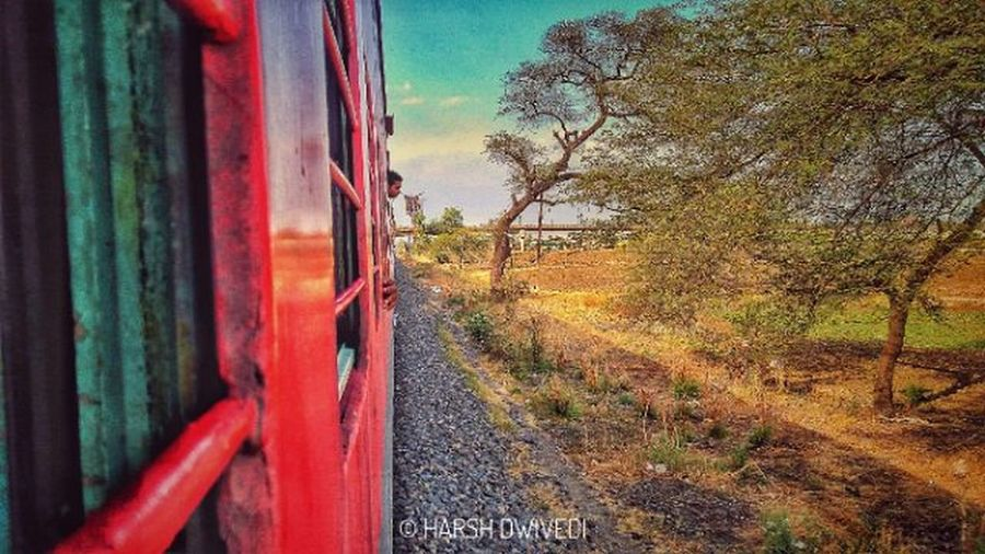 The journey to hometowm.... No People Outdoors Day Sky Tree Plant Red Nature Beauty In Nature Close-up Train The Great Outdoors - 2017 EyeEm Awards The Street Photographer - 2017 EyeEm Awards EyeEmNewHere Live For The Story HDR Collection Lileforlike Like4like