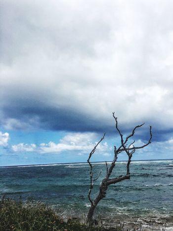 Scenics Sea Solitude By The Water