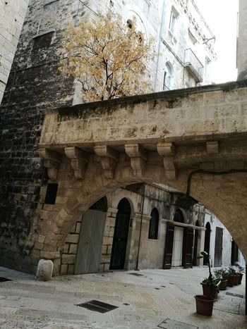 Architecture Built Structure Arch Day Ancient Travel Destinations Building Exterior No People No Filter Autumn Tree History Letstravel