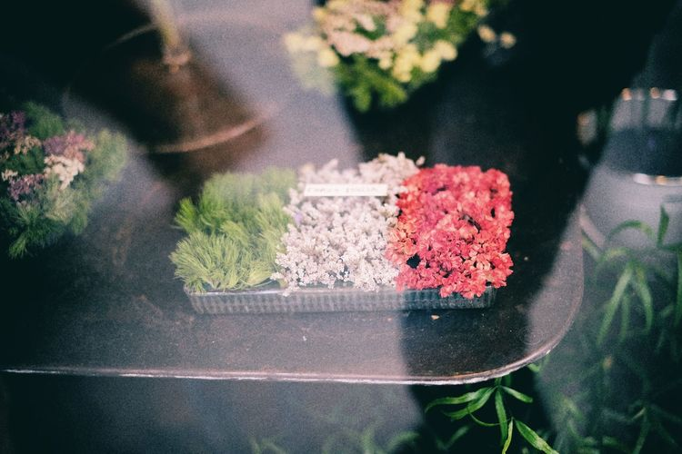 Flowers in container seen through glass window