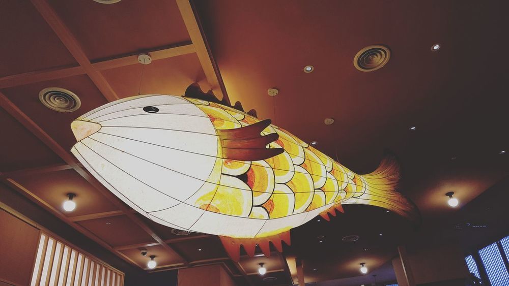 #fish #s7e #snap #daily #light Astrology Sign Arts Culture And Entertainment