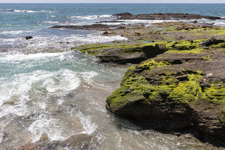 algae covered rocks overlooking the sea Water Sea Land Rock Rock - Object Beach Solid No People Motion Beauty In Nature Scenics - Nature Nature Wave Day Sport Outdoors Aquatic Sport Tranquility Laguna Beach