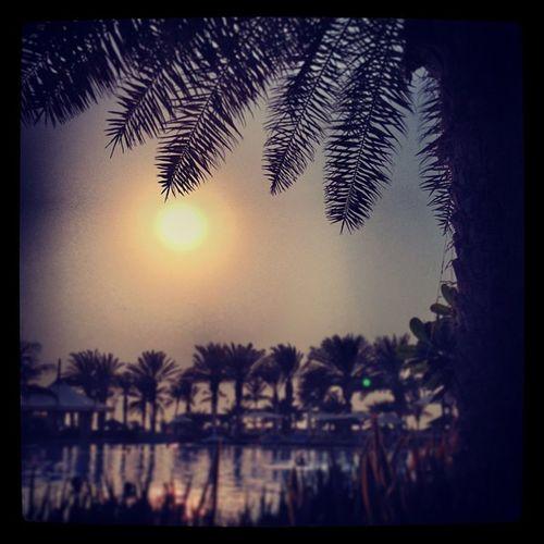 #dubai #wiedereintagvorbei Dubai Wiedereintagvorbei