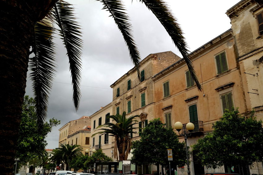 Cloudy Day EyeEm Best Shots EyeEm Gallery EyeEmBestPics Rainy Days Sassari The Week On EyeEm Tranquility Abandoned Architecture Building Exterior Built Structure Cityscapes Eye4photography  Italy Italy❤️ Low Angle View No People Old Houses Palm Tree Palmleaves Sardegna Streetphotography Tree_collection  Trees And Sky