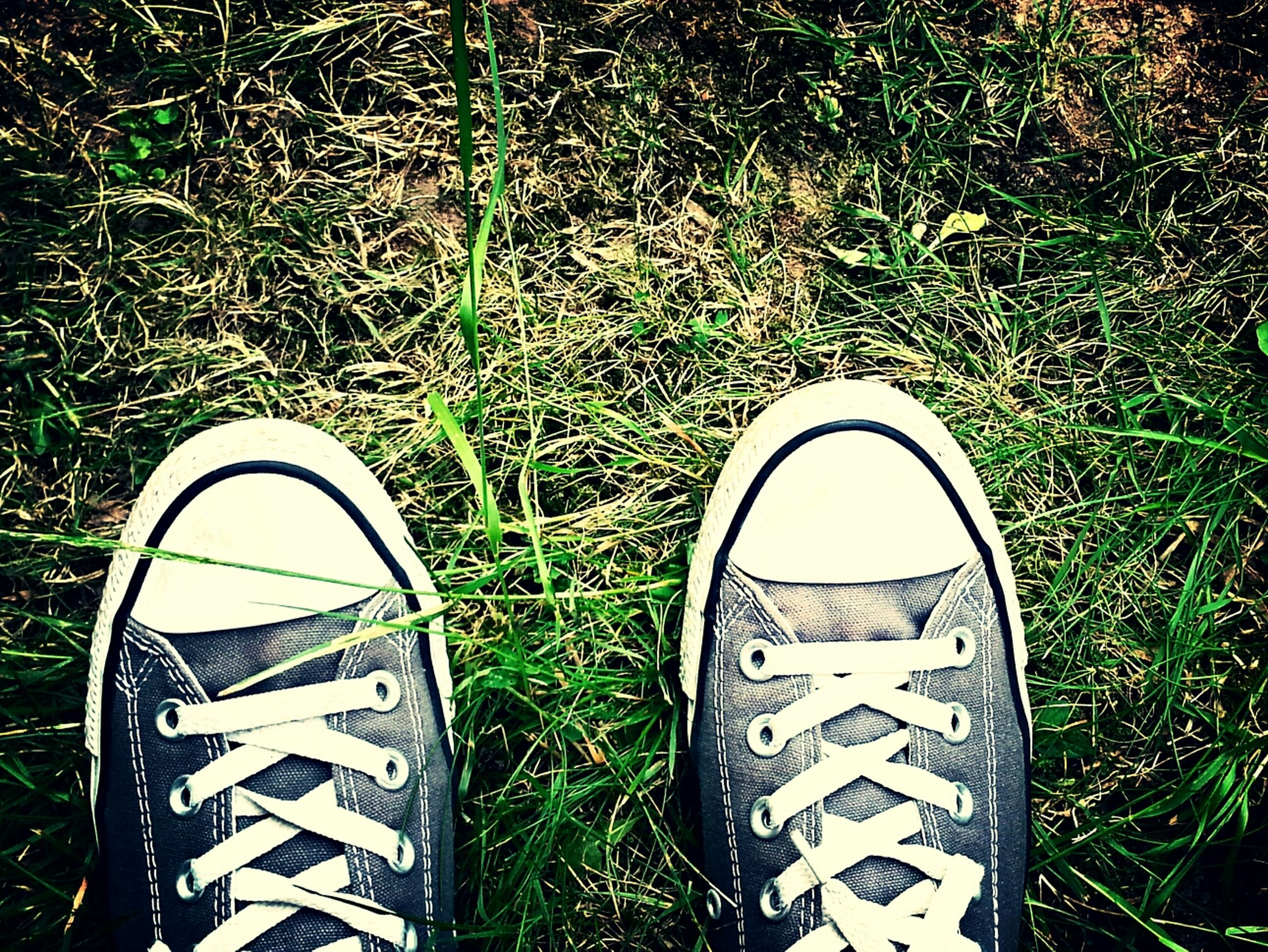 shoe, grass, low section, standing, field, grassy, person, lifestyles, footwear, leisure activity, personal perspective, high angle view, canvas shoe, men, pair, casual clothing, jeans