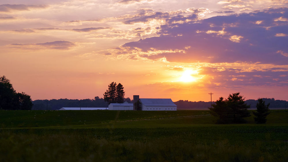 Country Roads Take me Home Barn Country Living Farm Growers MidWest Pasture Architecture Building Exterior Built Structure Cloud - Sky Crops Field Grass Nature No People Orange Color Outdoors Pastoral Rural Scene Sky Sunset Tranquility Tree Wallpaper