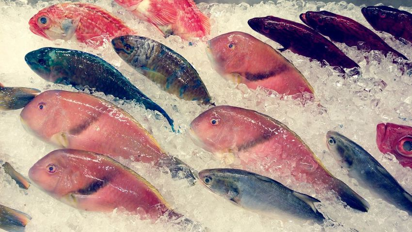 Fish Eating Seafood Super Fresh Still Swimming Dinner Crawfish Change Your Perspective The Changing City Repicture Food Seafish Healthy Food Foodporn The View And The Spirit Of Taiwan 台灣景 台灣情 Animal Photography Animals Getting Inspired Asian Culture Flock Volume Millennial Pink Visual Feast Food Stories