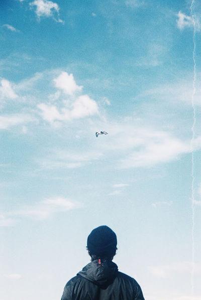 Bird Eyembestshots Eyemphotography Minimalism Portugal Portugaldenorteasul Silhouette Sky