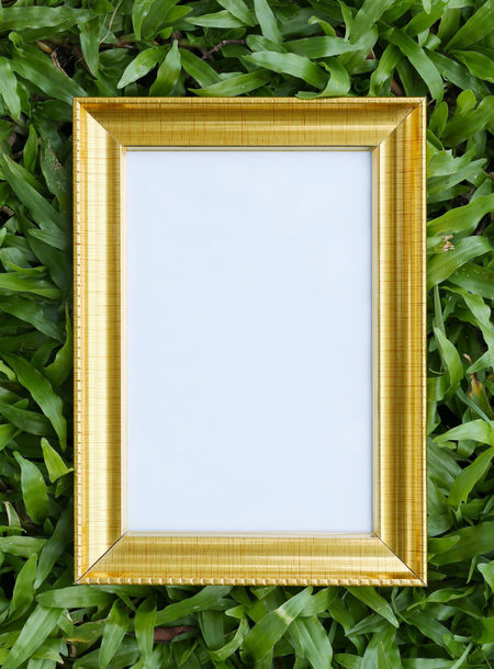 Gold picture frame on green lawn in top view for the design nature background. Green Color No People Plant Part Frame Nature Leaf Close-up Plant Copy Space Blank Picture Frame Day Indoors  Directly Above Art And Craft Pattern Rectangle Growth Beauty In Nature Green Lawns Green Lawn Gold Picture Frame Picture Frames Picture Frame Plank Picture Frame Art