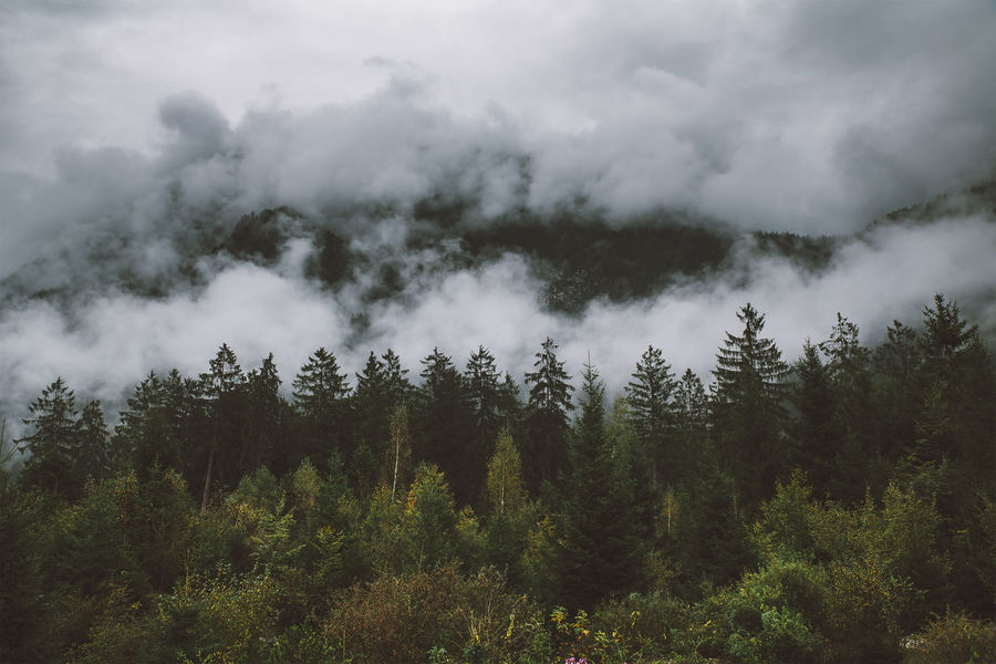 Bavaria Love Mood Captures Nature Photography Soul Travel Bavarian Alps Beauty In Nature Clouds Day Forest Garmisch-partenkirchen Growth Mountain Nature No People Outdoors Scenics Sky Tranquil Scene Tranquility Tree