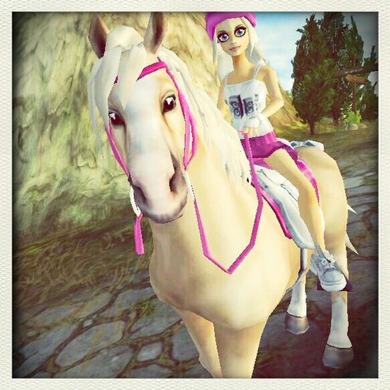 STAR STABLE First Eyeem Photo