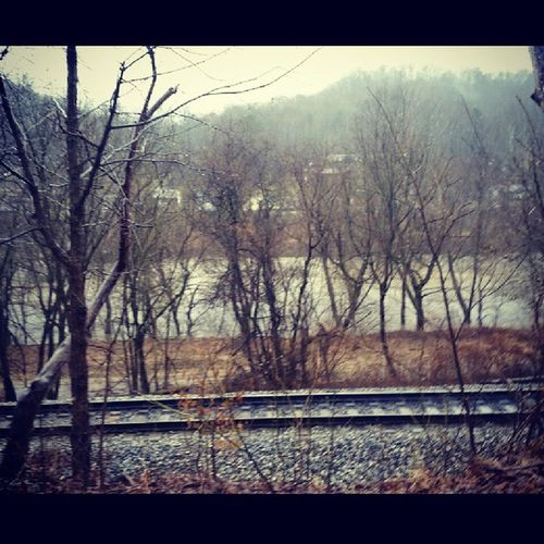 Floodwaters March2015 Sandplantroad Landscape_captures water_captures alumcreek bns_waters coalriver nature_up_close wv_igers westvirginia readyforspring ipulledoverforthis jj_justnature natureonly fiftyshades_of_nature wv_nature rsa_nature phototag_h2o