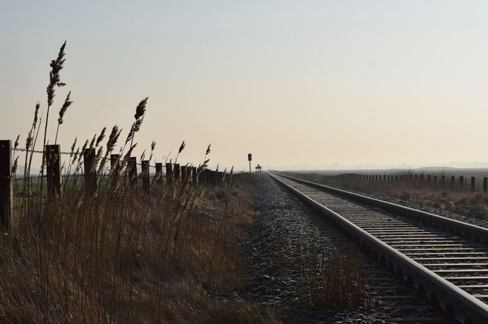 Tranquil Scene Train Train Track Train Tracks Schienen Schienenstrang Eisenbahnschienen Unendlich Infinity Gleis Gleise Weite Wide Wide Shot Eiderstedt Deutsche Bahn Nordfriesland Gerade Zaun Fence Gras