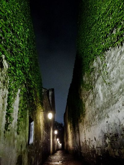 moon light . Night View Travel Wuzhen Town China Town China Beauty Wall Wall - Building Feature Light In The Darkness Light And Dark Night Sky Alley