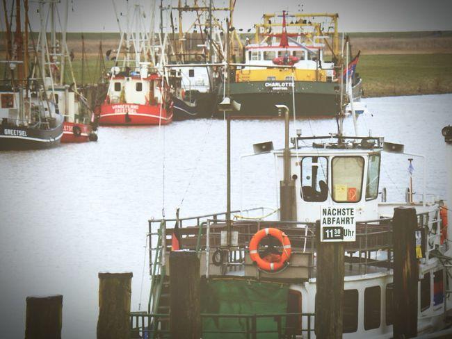 Taking Photos Eyemgermany Greetsiel Nordsee Nordseeküste Northsea OpenEdit Eyem Gallery Ostfriesland Feelingfree
