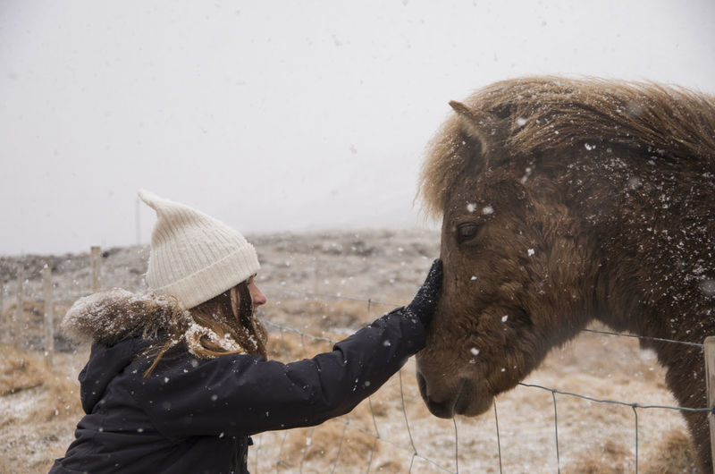 Close-up of woman touching horse during winter