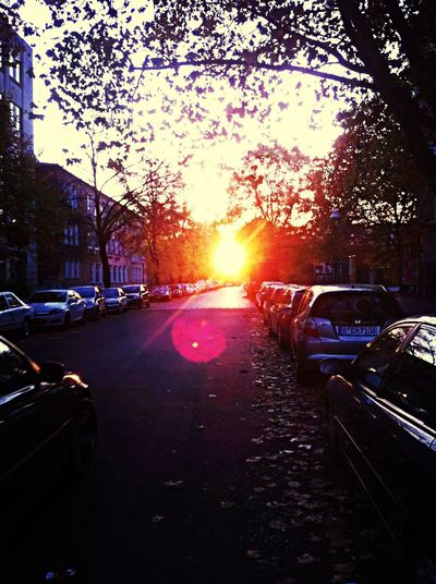 Was a beautifully golden afternoon. Sunset Berlin Autumn