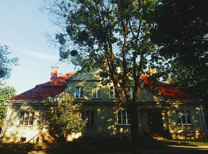 Low angle view of trees and house against sky