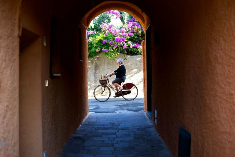 Celebrate Your Ride Lady Bike Travel Flowers One Shot Violet Flowers Bicycle Nature Street Photography Varigotti Taking Photos Ride A Bike  Miss Sunlight Acient Arquitecture Acient Palace Flower Green Colourful Wheels
