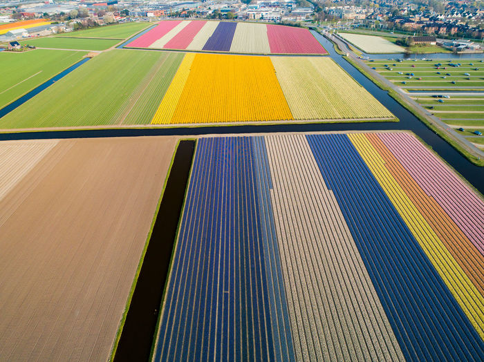 Aerial view of colorful landscape