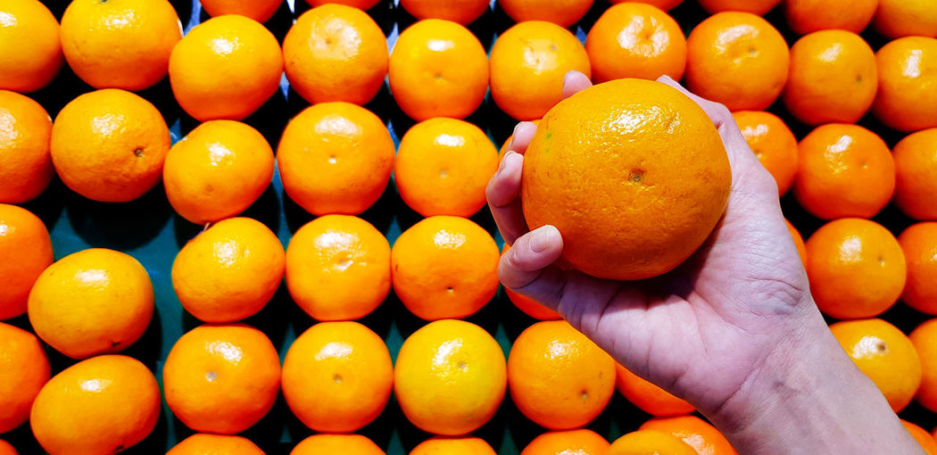 High angle view of orange fruits in container
