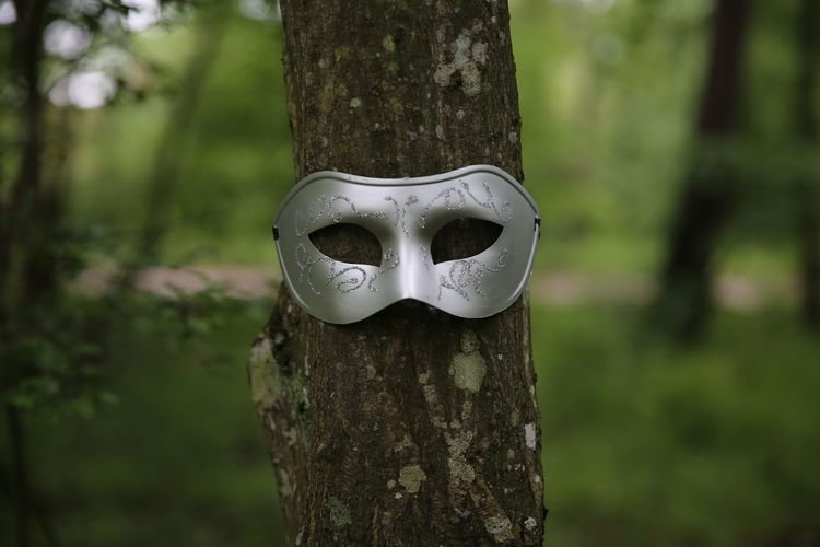 Close-up of mask on tree trunk in forest