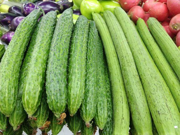 蔬菜、青菜、黄瓜、丝瓜 Sponge Gourd Towel Gourd Cucumis Sativus Green Cucumber Cucumber Backgrounds Market Full Frame Vegetable Retail  For Sale Close-up Green Color Food And Drink