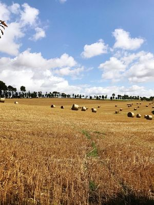 Maël-carhaix Brittany Field Bale  Landscape Sky Agriculture Rural Scene No People Hay Bale Nature Day Outdoors Beauty In Nature Harvest
