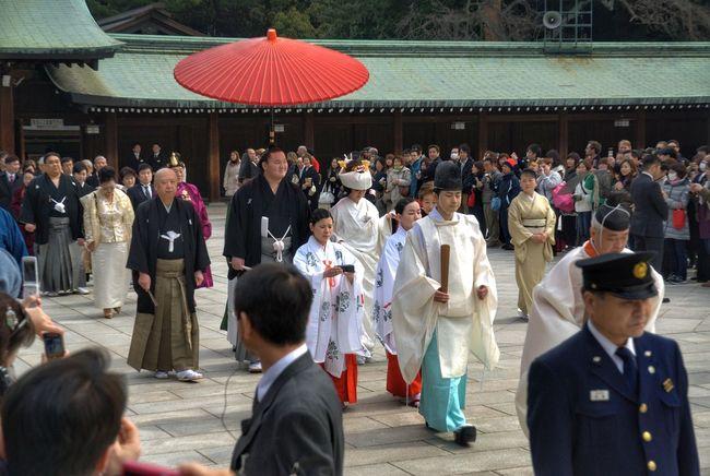 白鵬 翔 (Wedding of Hakuho Sho, sumo yokozuna) Japanese Culture Japanese Wedding Meiji Shrine Meiji-Jingu Hakuho Sumo Sumowrestler Wedding Japan Culture Tradition Traditional Clothing Spirituality Large Group Of People Men Adult People Day Crowd