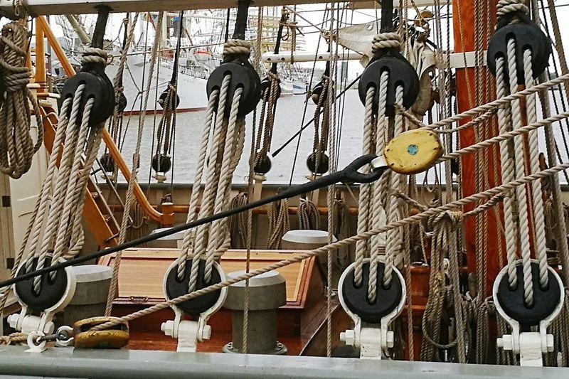 Sail Tall Ships Tall Ships Festival Delfsail 2016 Delfzijl The Netherlands