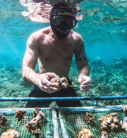 Shirtless man holding coral while swimming in sea