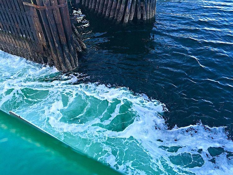 Bainbridge Island Ferry Churning Water Ferry Ferry Passengers Seattle Seattle Skyline Seattle, Washington Sunrise Washington Ferry Water My Commute