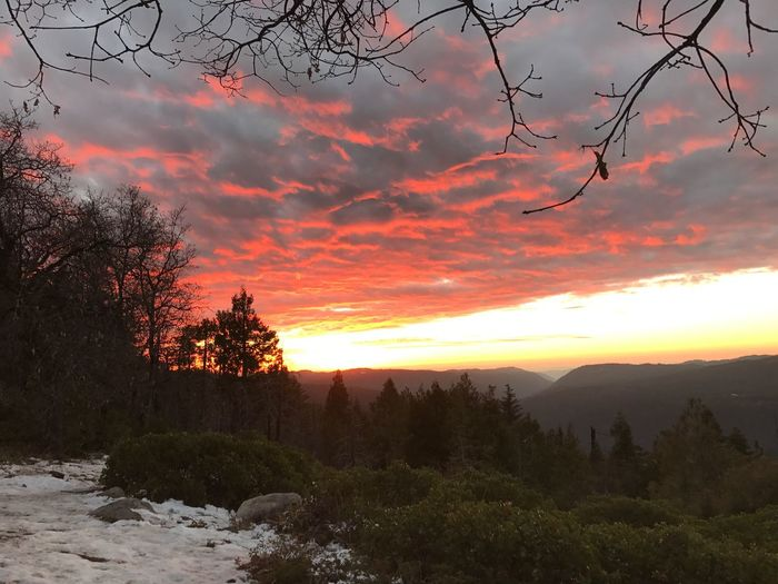 Sunset Beauty In Nature Nature Tree Scenics Sky Orange Color Tranquility Tranquil Scene Landscape Cloud - Sky Outdoors No People Mountain Day IPhoneography No Filter, No Edit, Just Photography Snow Dramatic Sky High Sierra Best Sunrises And Sunsets Winter Forest Tranquility