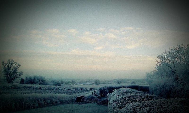Cold Temperature Frost No People Sky Tranquility Winter HUAWEI Photo Award: After Dark