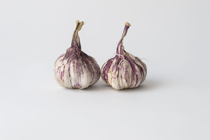 Close-up of garlic against white background