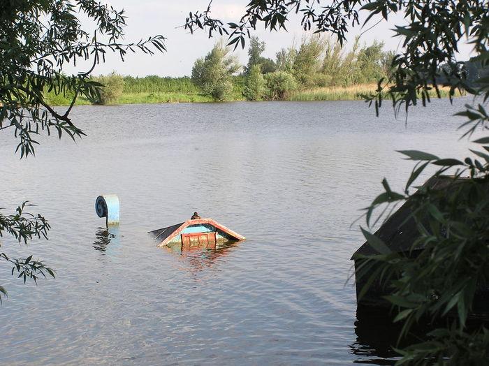 Fadd Magyarország Duna Folyo River Riverside Deadriver Holtág Barka Ark Barge Bark Elsüllyedt Sunk Természet Természetfoto Nature Naturephotography Landscapes With WhiteWall