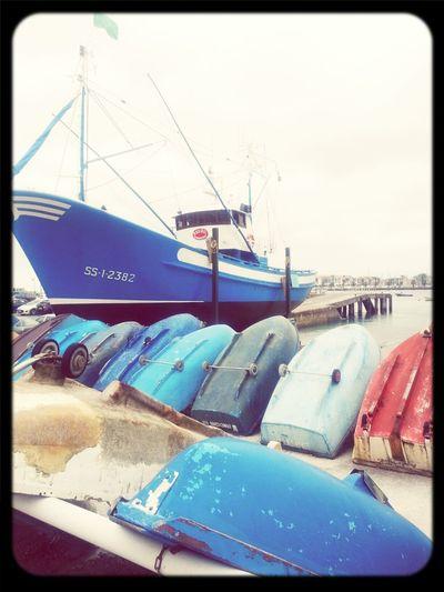 Barco De Pesca Movilgrafias