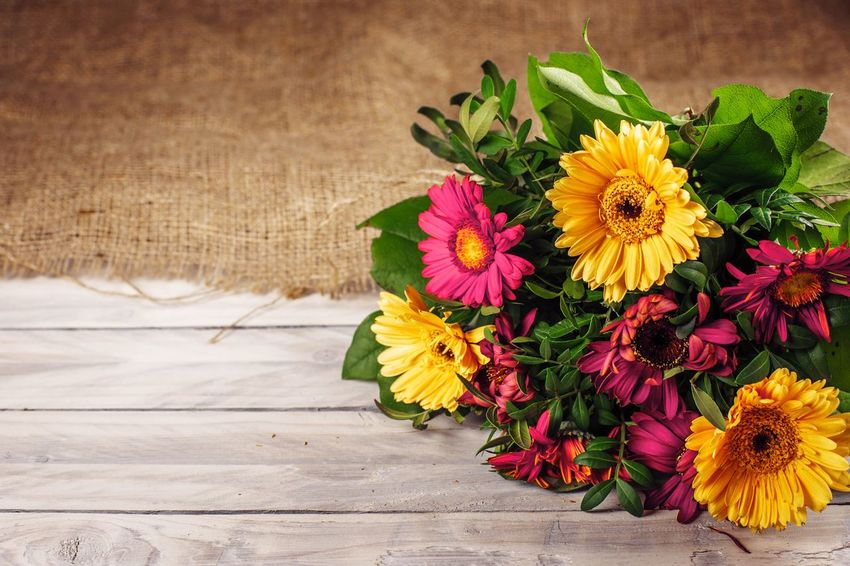 Bouquet of colorful flowers Mothers Day Valentines Day Decoration Ornament Bouquet Flower Yellow Freshness Petal Fragility Flower Head Multi Colored Nature Indoors  Close-up No People Beauty In Nature Day