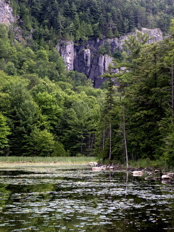 Parc des Falaises, Prévost, QC Beauty In Nature Forest Mountain Nature Outdoors Scenics Tranquil Scene Water