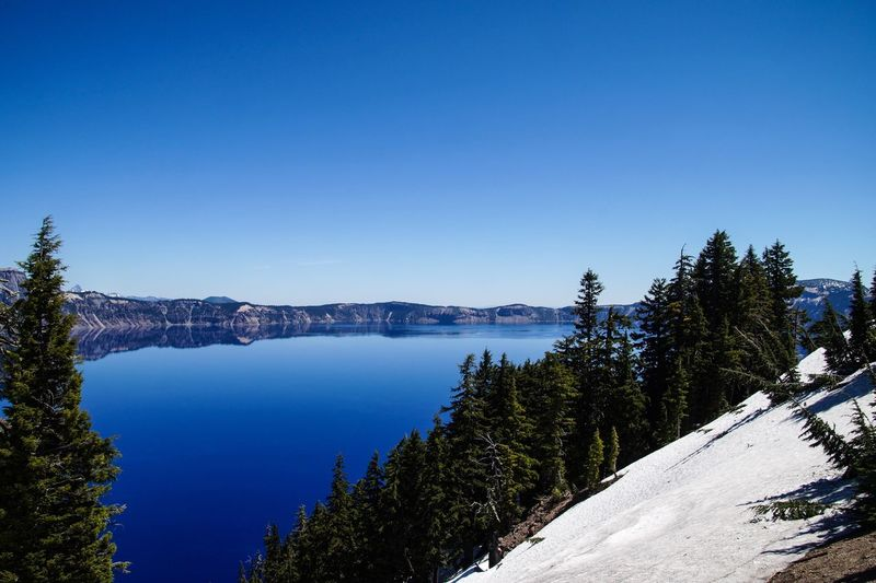 Crater Lake - the blue is indescribable Volcanic Crater National Park Crater Lake Snow Tree Plant Sky Beauty In Nature Scenics - Nature Nature 17.62° Water Blue Idyllic Lake