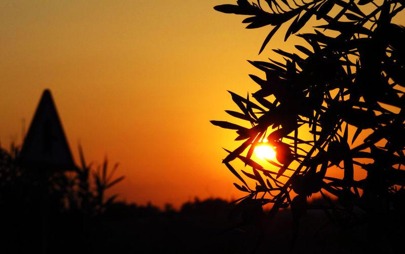 Mediterranean Sunset In Honor Of EyeEm Best Shots - Sunsets + Sunrise EyeEm Nature Lover AMPt_Nature