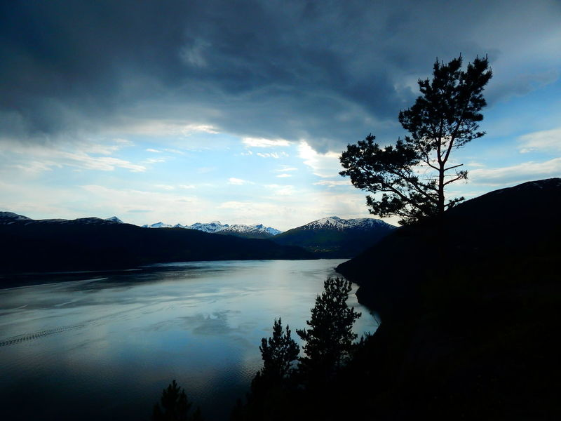 Abendhimmel Abendstimmung Am Meer Beauty In Nature Cloud - Sky Day Fjord Landscape Landschaft Natur Nature Nature No People Outdoors Reflection Scenics Schatten See Siluette Sky Tranquil Scene Tree Water Ålesund, Norway The Great Outdoors - 2017 EyeEm Awards