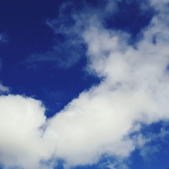 Ceu de minha cidade. Nuvens Ceu Azul Nuvem On Earth #design #fashion #things #hats #sky #clouds #beach #sun Nuvens De Algodão Nuvensbrancas Nuvens❤ Nuvensfofas Goiás,GO Brasil ♥ Desainer Criatividade Original Art Beleza Caiaponia Goiano Cidademaravilhosa Cidades Históricas Cidade De Goiás CidadedeGoias Azul E Branco
