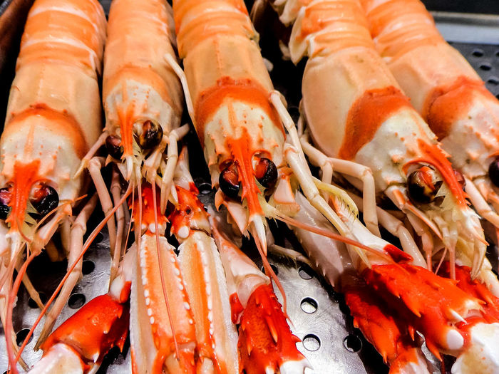 Food Photography Street Fashion Street Life Freedom Freshness Escaping Black And White Photography Abstract Abstract Backgrounds Abstract Photography Natural Beauty Nature Photography EyeEm Nature Lover Animal Wildlife Animal Photography Animals In The Wild EyeEm Best Shots Streetphoto_color Street Light Street Photography EyeEm Selects Crustacean Seafood Fish Market Close-up Food And Drink Sushi Lobster Shrimp Sashimi  Market Stall Stall Shrimp - Seafood Prawn For Sale Crab - Seafood Farmer Market Soy Sauce Market Display Retail Display Chopsticks Salmon - Seafood Street Market Salmon Japanese Food Sea Urchin Shop Mussel EyeEmNewHere
