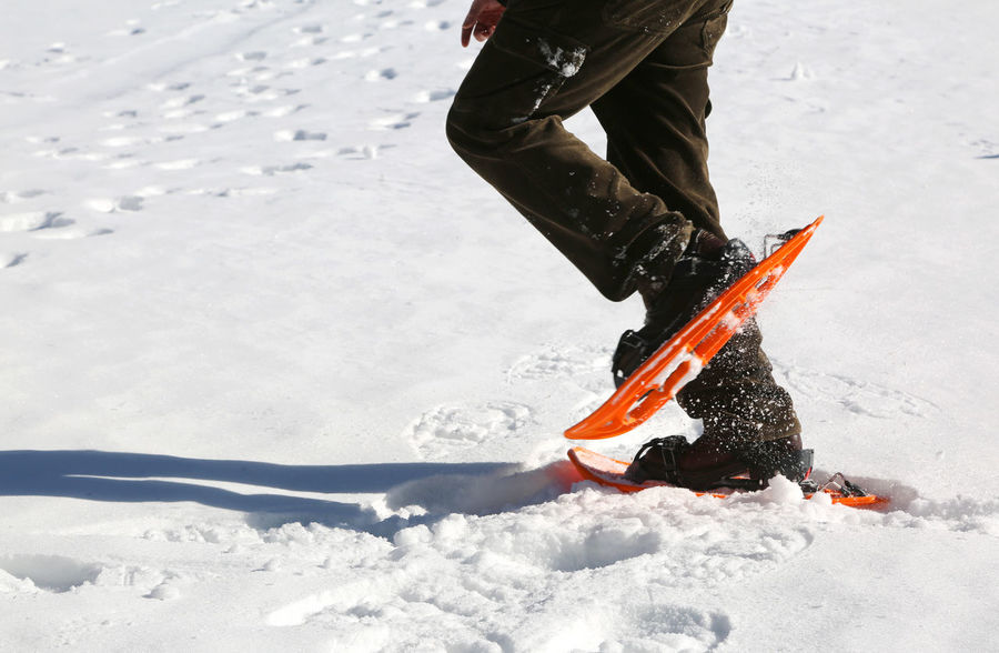 man walks with orange snowshoes on white snow in winter Excursion Leg Snowshoe Winter Adventure Cold Equipment Extreme Sports Legs Mountains One Person People Shoes Snow Snow Shoe Snow Shoe Paws Snow Shoes Snowshoe Trip Snowshoeing Snowshoes Sport Sport Equipment Sporting Sportwear Walking