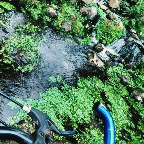Ojo De Agua Hermoso Un Paseo En Bicicleta